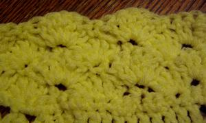 Crochet shell edging (closed)